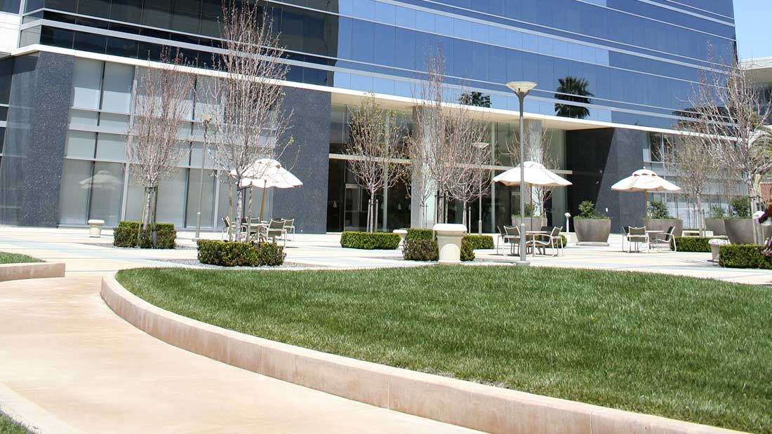 north-florida-commercial-landscaping